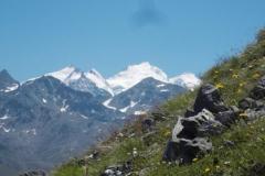 Ausflug in die Alpen